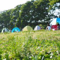 キャンプ場で楽しんでいる人たち